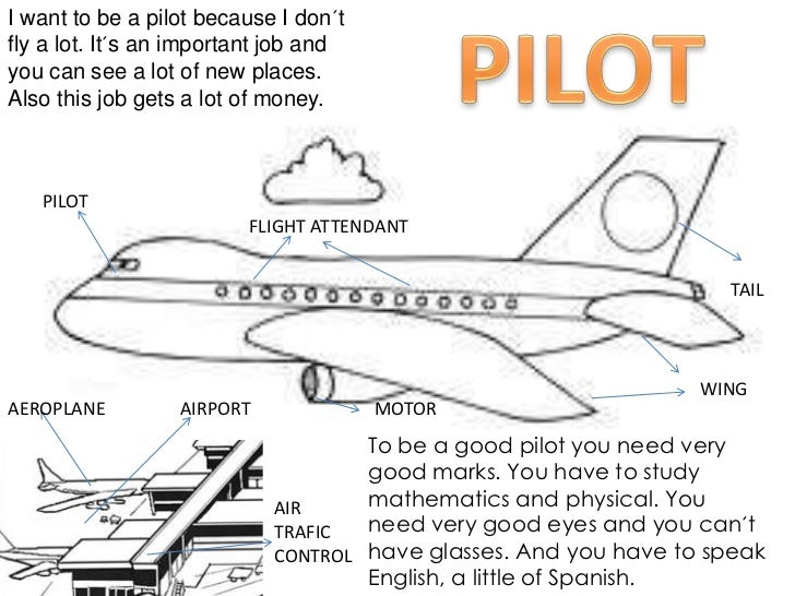 my ambition to become a pilot I am not sure whether i would like to be a commercial pilot handling passenger aircraft or a fighter-pilot in the air force being a commercial pilot has several.
