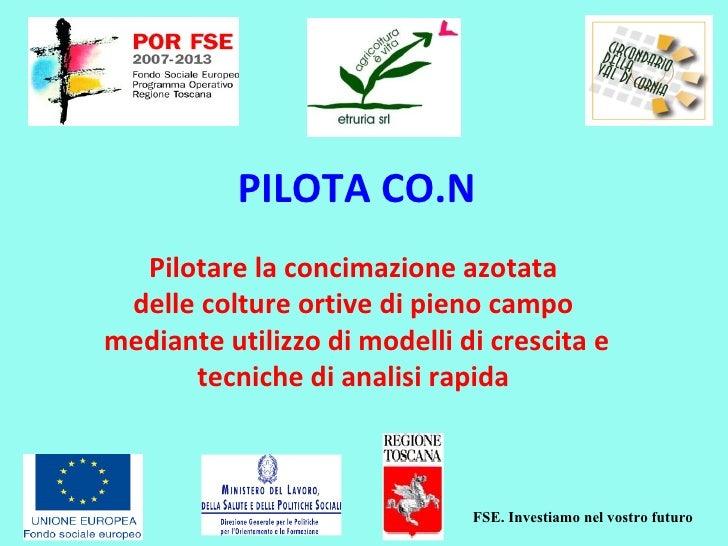 FSE. Investiamo nel vostro futuro PILOTA CO.N Pilotare la concimazione azotata  delle colture ortive di pieno campo  media...