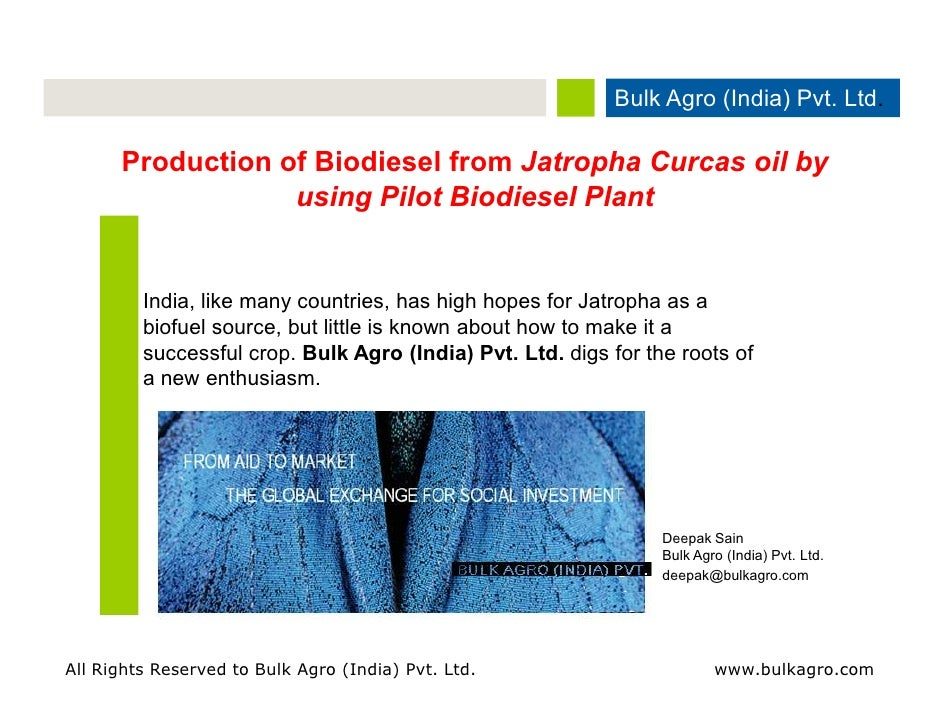 how to get biodiesel from jatropha