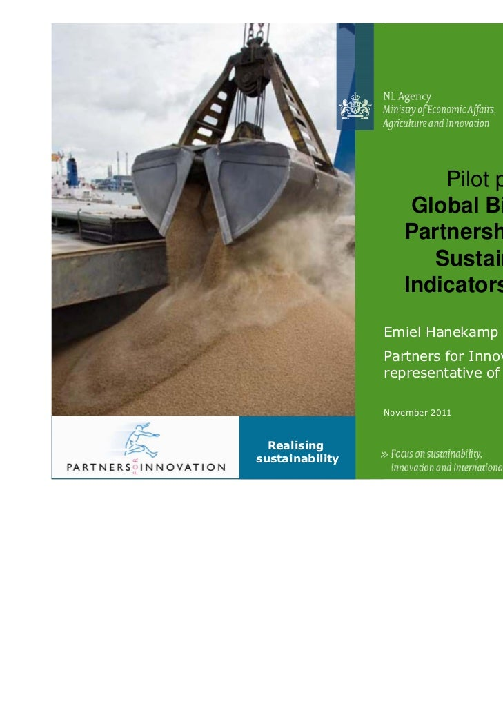 Pilot project:                     Global Bio-Energy                    Partnership (GBEP)                       Sustainab...