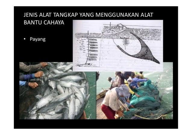 Pim1221 4 Fishing Ground