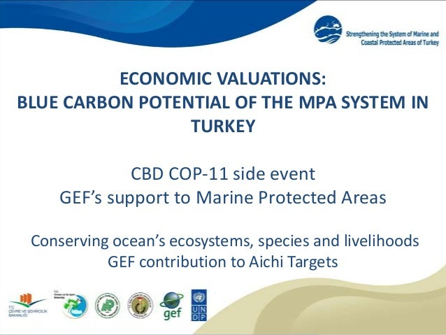 ECONOMIC VALUATIONS: BLUE CARBON POTENTIAL OF THE MPA SYSTEM IN TURKEY CBD COP-11 side event GEF's support to Marine Prote...
