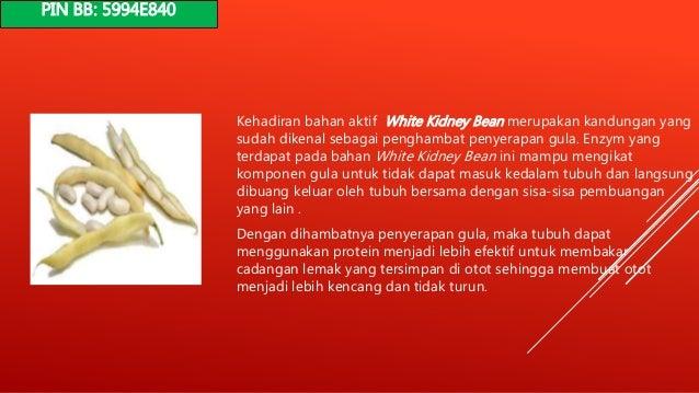 Diet Golongan Darah O Untuk Wanita Paling Ampuh (#Teruji)