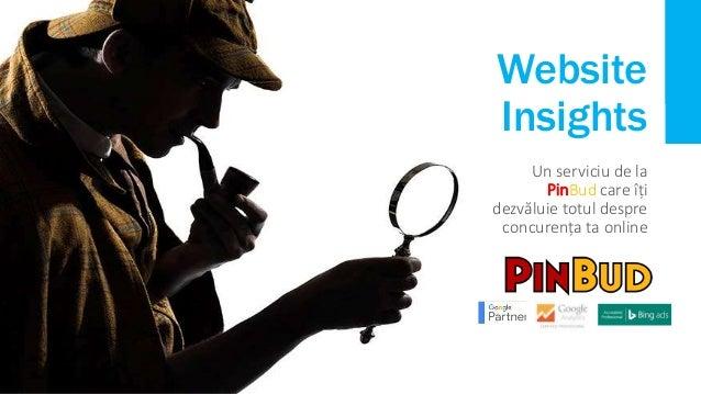 Website Insights Un serviciu de la PinBud care îți dezvăluie totul despre concurența ta online