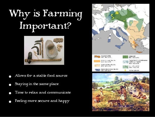 why agriculture is important essay The top 100 questions of importance to the future of global agriculture jules pretty 1, william j sutherland 2, jacqueline ashby 3, jill auburn 4, david baulcombe 5, michael.