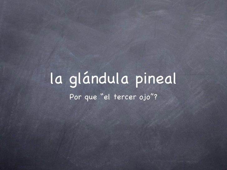 """la glándula pineal <ul><li>Por que """"el tercer ojo""""? </li></ul>"""