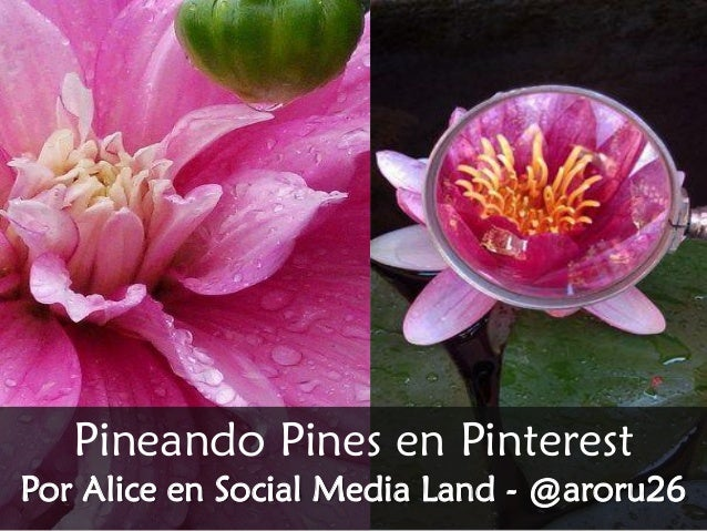 Pineando Pines en Pinterest Por Alice en Social Media Land - @aroru26