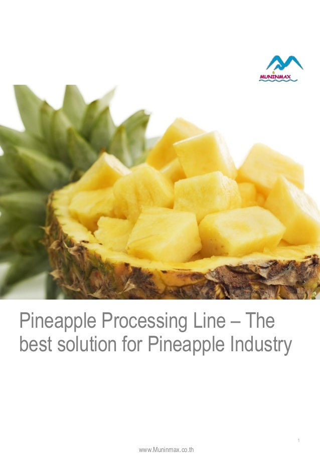 Pineapple Processing Line – The best solution for Pineapple Industry 1 www.Muninmax.co.th