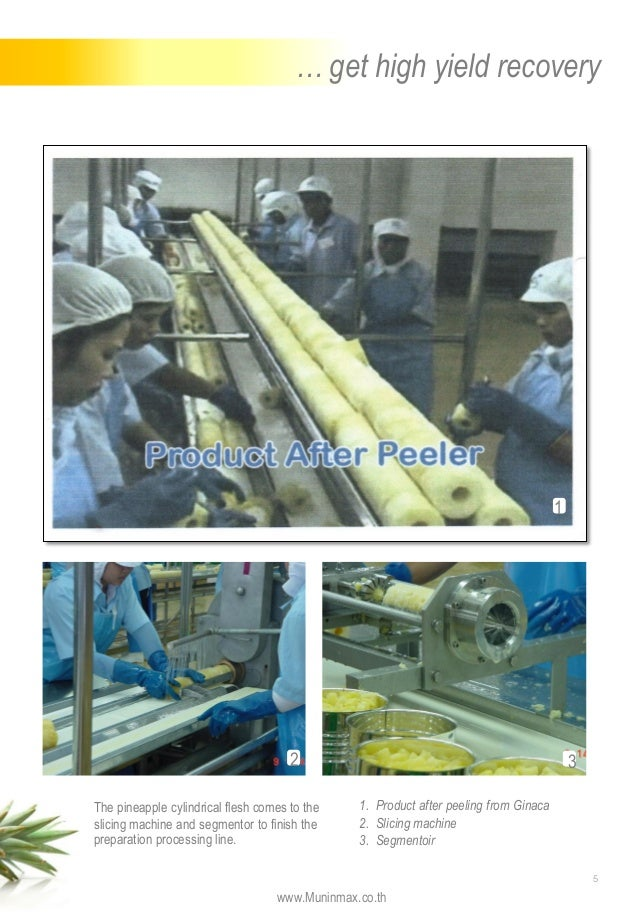 Apple Sorting Machine Sorting Packing Lines For Fruits