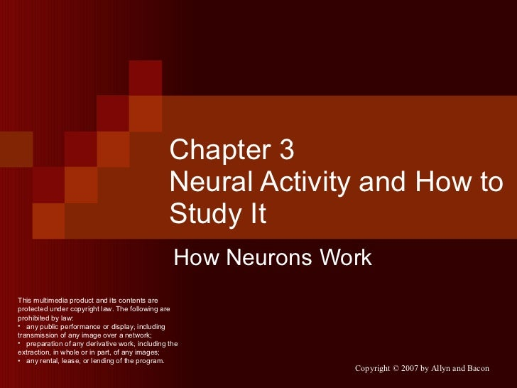 Chapter 3 Neural Activity and How to Study It How Neurons Work <ul><li>This multimedia product and its contents are protec...