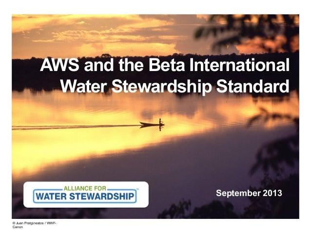 AWS and the Beta International Water Stewardship Standard  September 2013  © Juan Pratginestos / WWFCanon