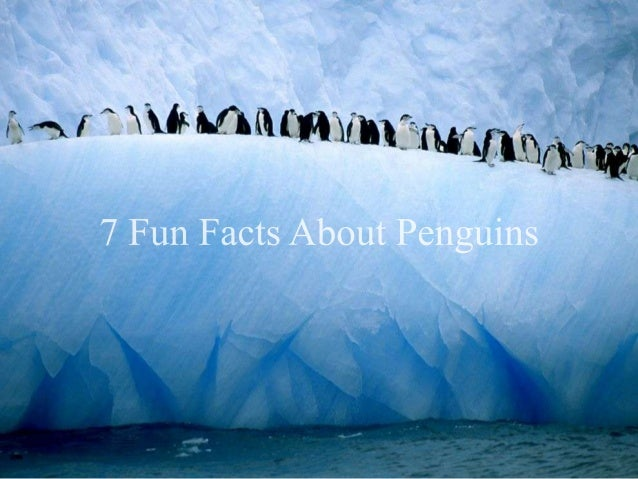 7-fun-facts-about-penguins-1-638.jpg?cb=1375403861