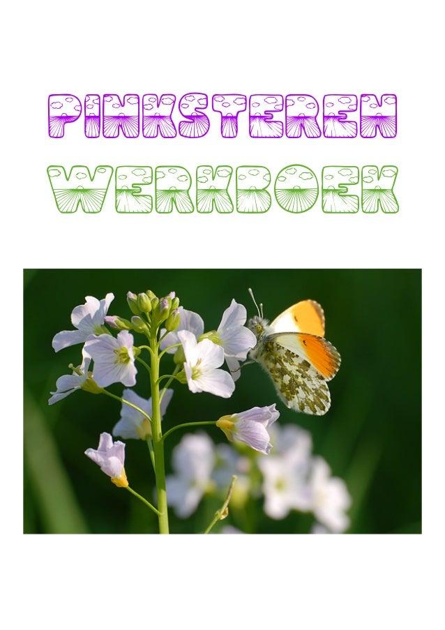 PINKSTERENWERKBOEKPinksteren werkboek, met werkbladen en verhalen uit kinderbijbel over visvangst, hemelvaart, pinksterenB...