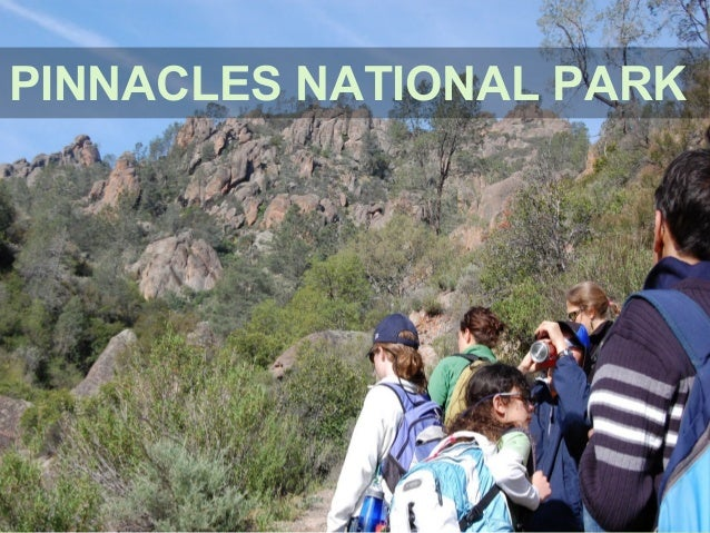 Naturalists at Large Pinnacles 2016