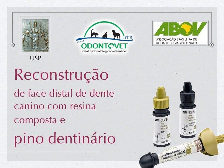 USPReconstruçãode face distal de dentecanino com resinacomposta epino dentinário