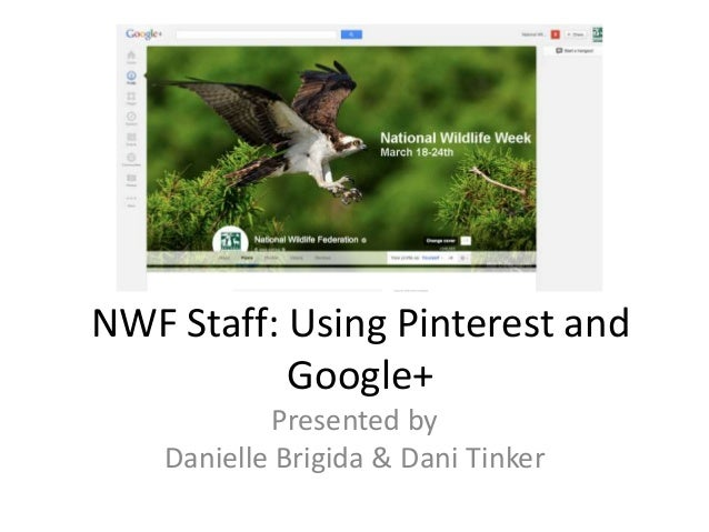 NWF Staff: Using Pinterest andGoogle+Presented byDanielle Brigida & Dani Tinker