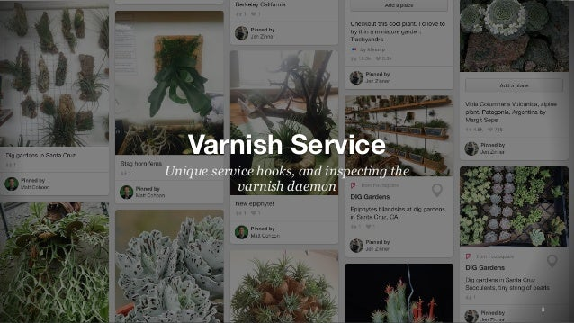 8 Varnish Service Unique service hooks, and inspecting the varnish daemon