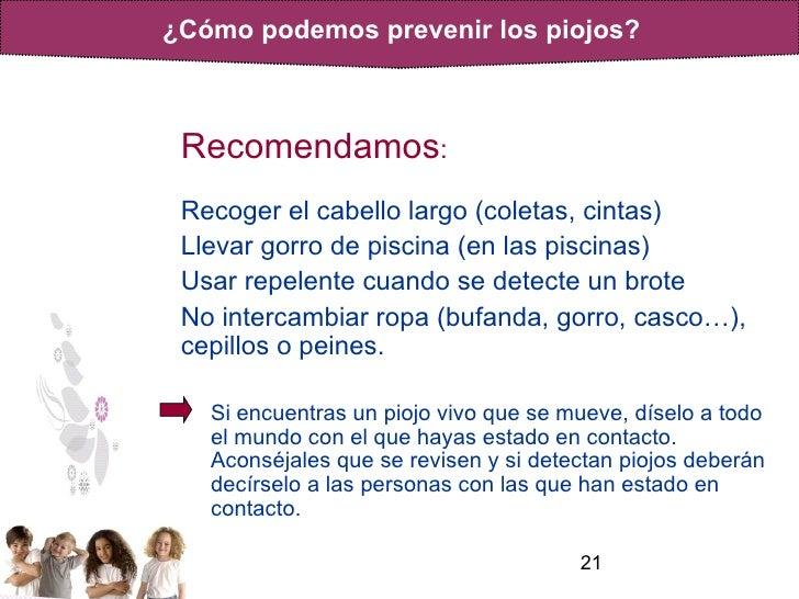 Piojos informacion for Piojos piscina