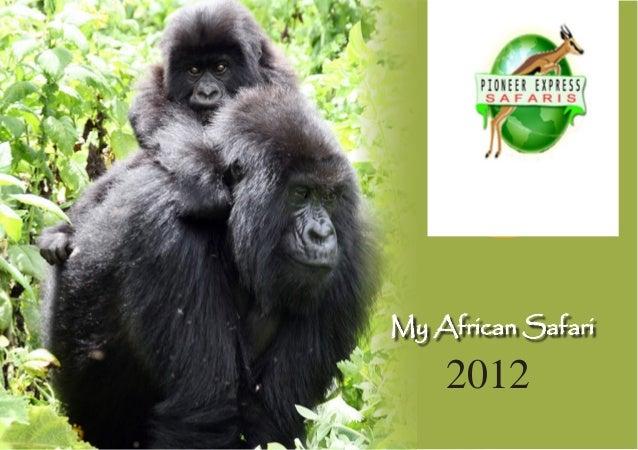 My African Safari 2012