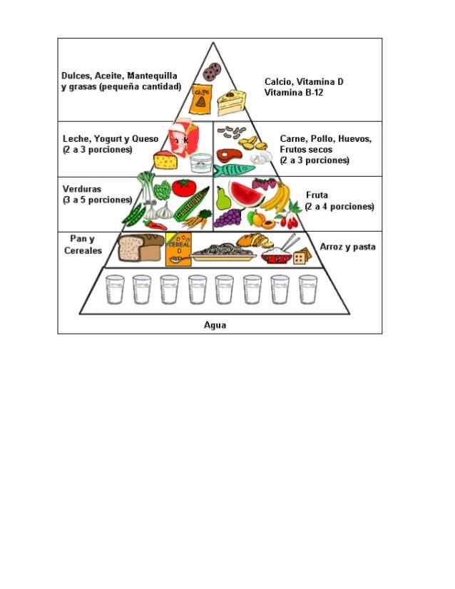 Piramide alimenticia
