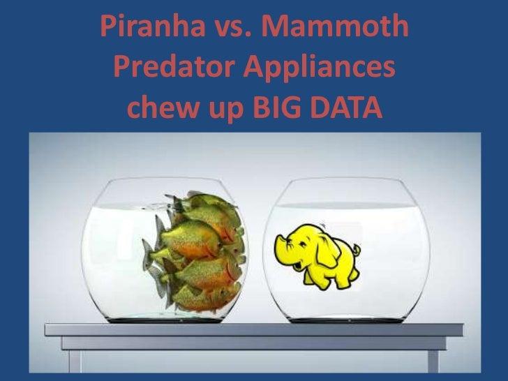 Piranha vs. Mammoth Predator Appliances  chew up BIG DATA