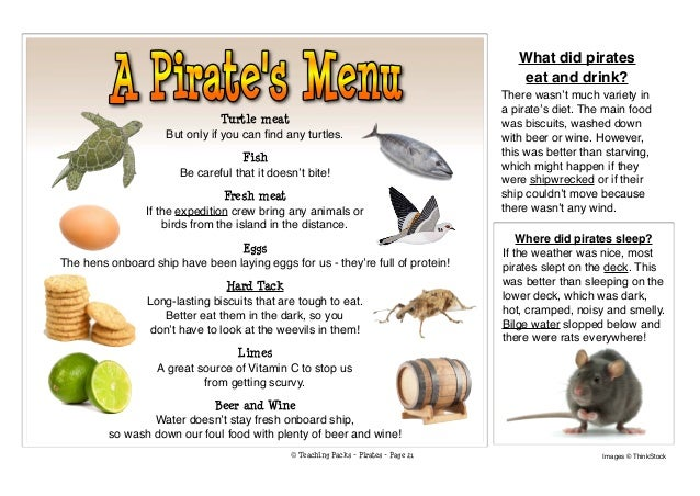 Land Animals And The Food They Eat