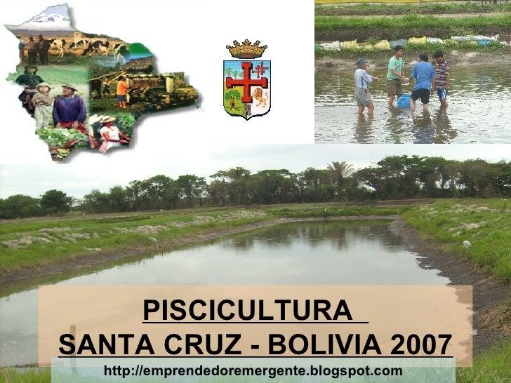 PISCICULTURA  SANTA CRUZ - BOLIVIA 2007 http://emprendedoremergente.blogspot.com