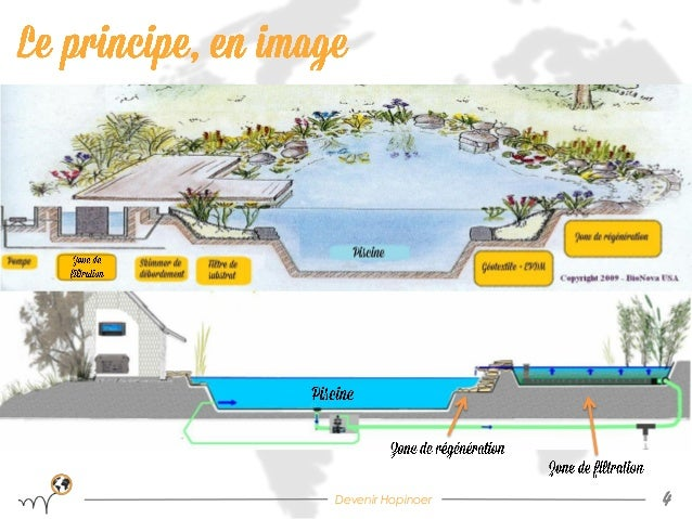 Bassin de baignade naturel by hopineo for Plan piscine naturelle