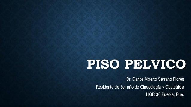 PISO PELVICO Dr. Carlos Alberto Serrano Flores Residente de 3er año de Ginecología y Obstetricia HGR 36 Puebla, Pue.