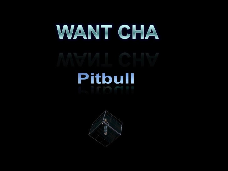 WANT CHA<br />Pitbull<br />