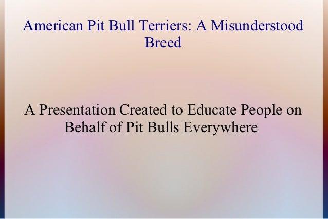 American Pit Bull Terriers: A Misunderstood                   BreedA Presentation Created to Educate People on      Behalf...