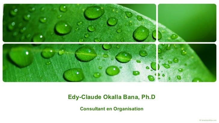Edy-Claude Okalla Bana, Ph.D Consultant en Organisation