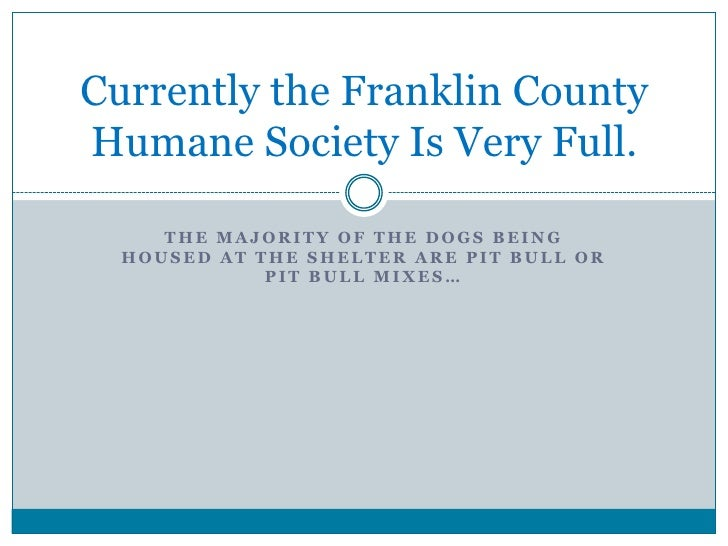 Currently the Franklin CountyHumane Society Is Very Full.     THE MAJORITY OF THE DOGS BEING  HOUSED AT THE SHELTER ARE PI...