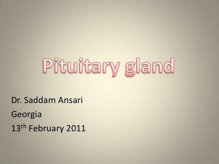 Pituitary gland<br />    Dr. Saddam Ansari <br />Georgia<br />    13thFebruary 2011 <br />