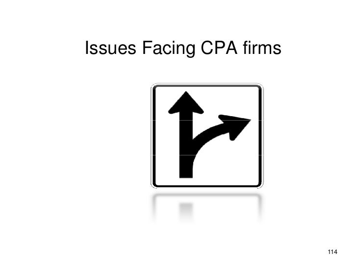 Issues Facing CPA firms                               114