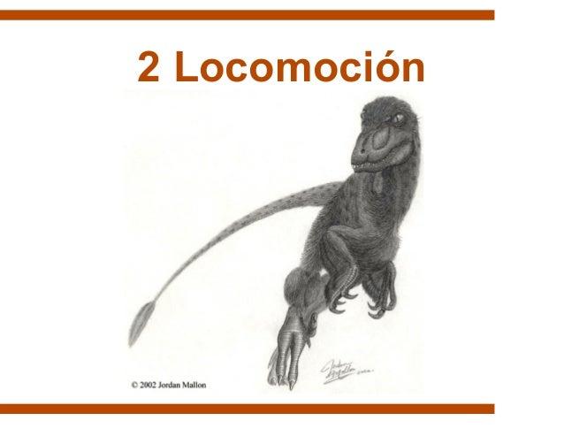 2 Locomoción