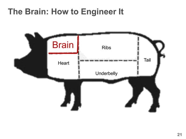 The Brain: How to Engineer It           Brain       Ribs                                  Tail            Heart           ...