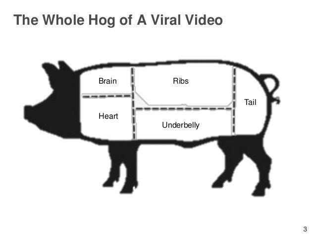 The Whole Hog of A Viral Video            Brain      Ribs                                  Tail            Heart          ...