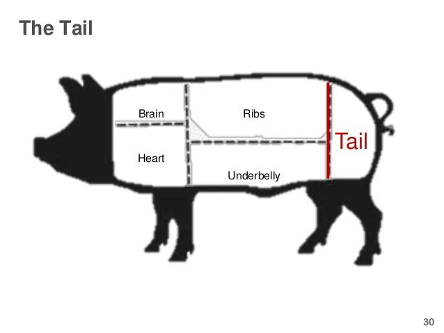 The Tail           Brain     Ribs                                Tail           Heart                   Underbelly        ...
