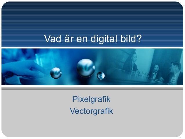 Vad är en digital bild? Pixelgrafik Vectorgrafik