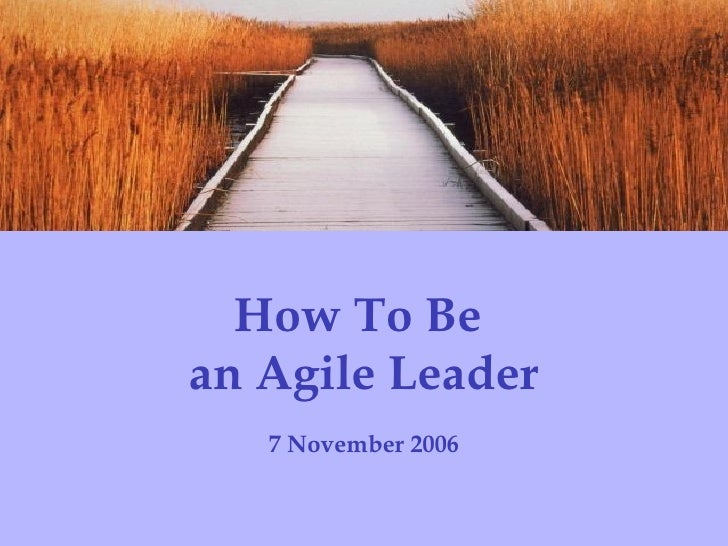 How To Be  an Agile Leader 7 November 2006 Institute for Collaborative Leadership   Evolutionary Systems Consulting