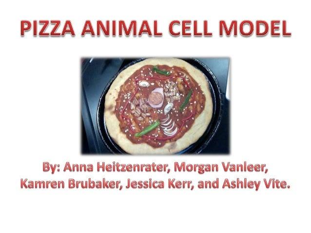 Lysosome Cell Membrane  Nucleus  Nucleolus Chromatin  Mitochondria  Nuclear Membrane  Rough Endoplasmic Reticulum  Ribosom...