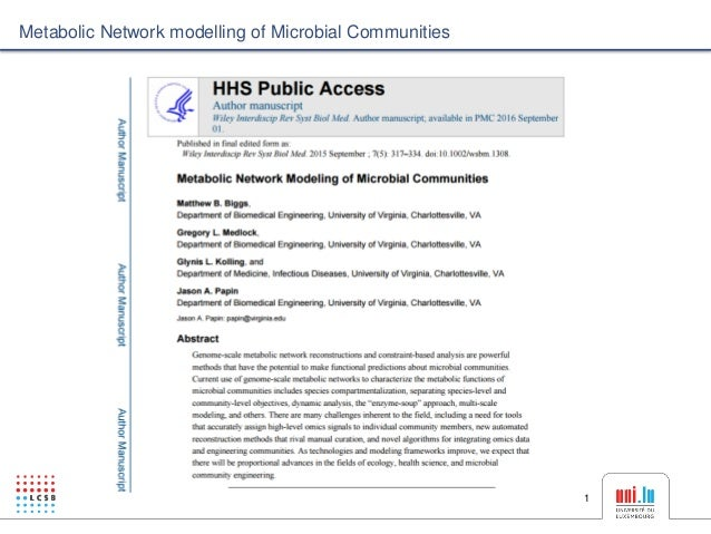 1 Metabolic Network modelling of Microbial Communities