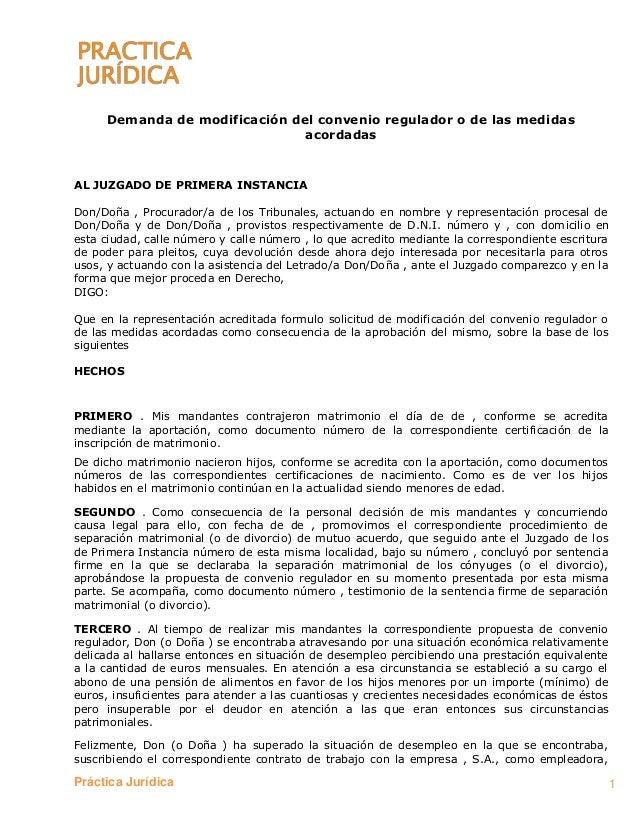 Ejemplo De Formulario Pr Ctica Jur Dica