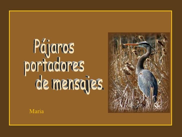 Pájaros portadores de mensajes ...  Maria