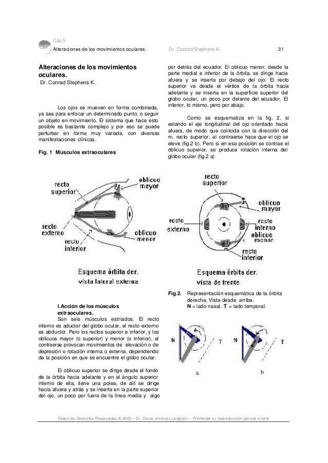Cap 5 Alteraciones de los movimientos oculares. Dr. Conrad Stephens K. 31 Todos los Derechos Reservados © 2003 – Dr. Oscar...