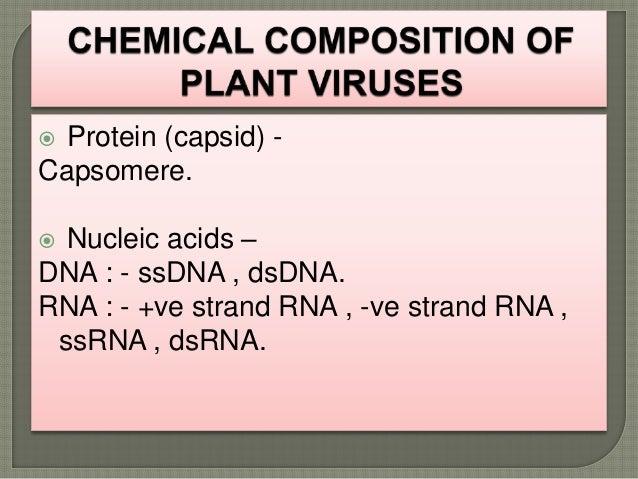 PLANT VIRUS PPT - SLIDE SHARE