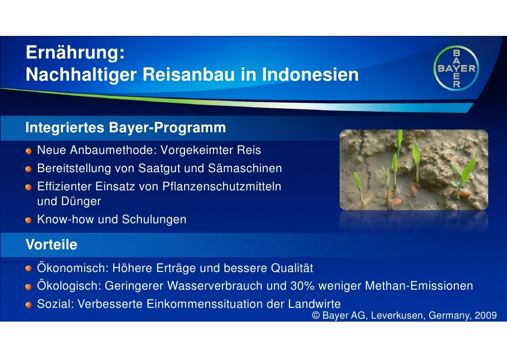 Ernährung: Nachhaltiger Reisanbau in Indonesien  Integriertes Bayer-Programm  Neue Anbaumethode: Vorgekeimter Reis  Bereit...