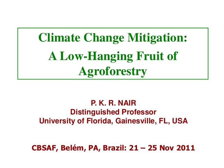 Climate Change Mitigation:    A Low-Hanging Fruit of        Agroforestry                P. K. R. NAIR          Distinguish...