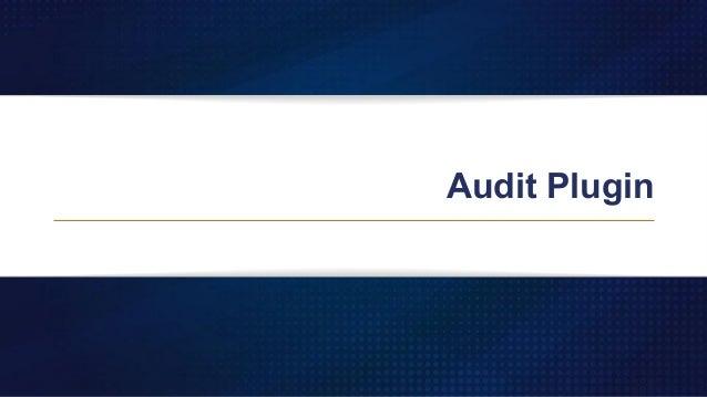 Audit Plugin